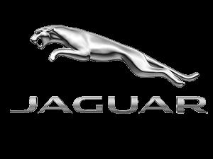 Jaguar-logo-daansautomotive